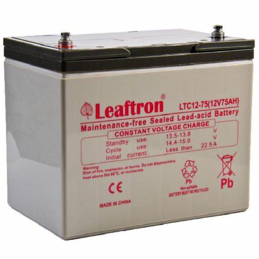 Leaftron1275