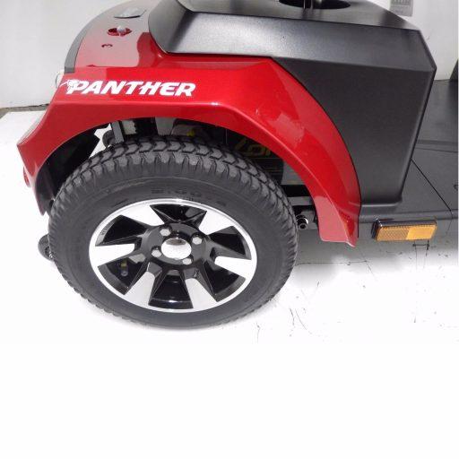 panther4